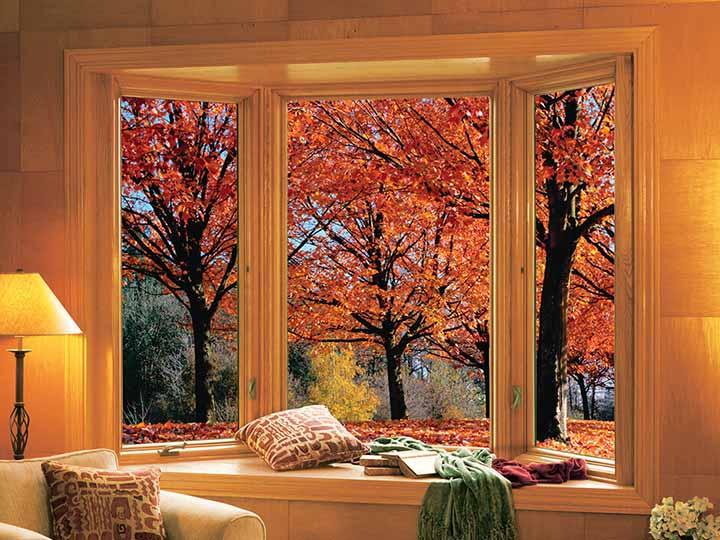 Bay Window bay windows , bow windows - renewalandersen bay windows
