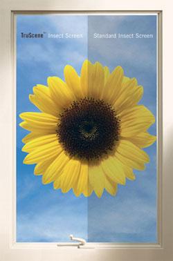 Window Cleaning Tips Renewal By Andersen Window Care Videos